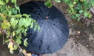 Καιρός: Καταιγίδες και την Παρασκευή (2/9) - Πού θα χρειαστείτε ομπρέλα