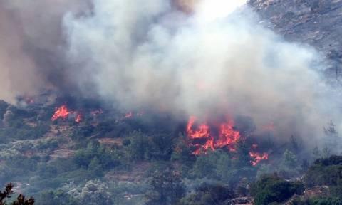 Κρήτη: Υπό μερικό έλεγχο η πυρκαγιά στο Ρέθυμνο