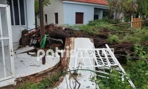 Αγρίεψε ο καιρός: Πλημμύρες και ανεμοστρόβιλοι σάρωσαν τη δυτική Ελλάδα