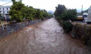 Κακοκαιρία: Βιβλική καταστροφή στο Δήμο Θερμαϊκού