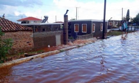 Κακοκαιρία: Η θεομηνία άφησε πίσω της τέσσερις νεκρούς και ανυπολόγιστες καταστροφές