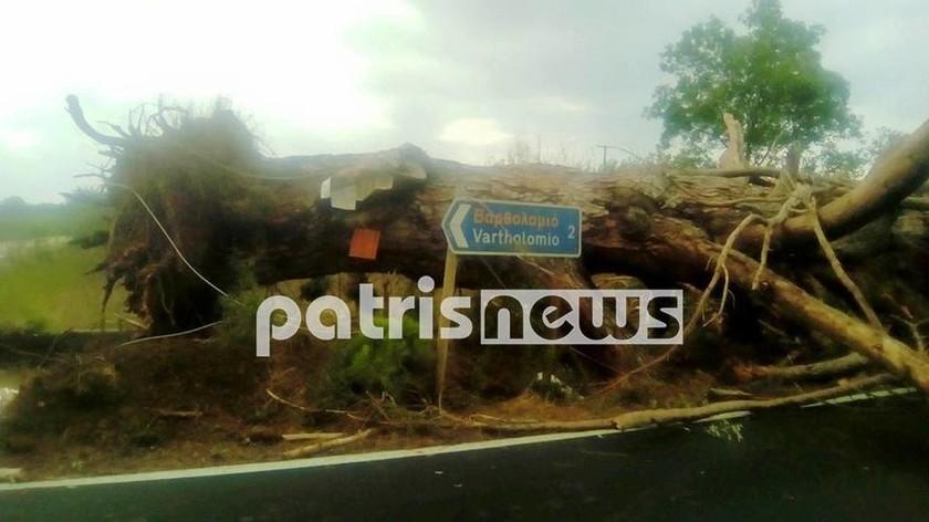 Ισχυροί άνεμοι σαρώνουν και δημιουργούν προβλήματα σε Ηλεία και Αχαΐα (pics)