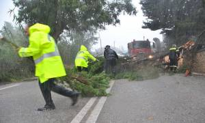 Η κακοκαιρία χτύπησε ξανά τη δυτική Ελλάδα - Χωρίς ρεύμα η Ζάκυνθος, μεγάλες ζημιές στην Ηλεία