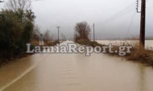 Κακοκαιρία: Κλειστός ο δρόμος από Λαμία προς Καρπενήσι - Εγκλωβισμένοι οδηγοί