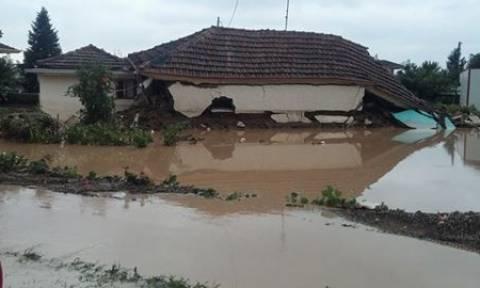 Κακοκαιρία: Καταστροφές από την υπερχείλιση του Πηνειού ποταμού - Σε απόγνωση οι κάτοικοι