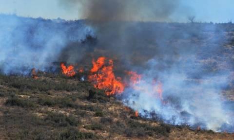Υπό μερικό έλεγχο η φωτιά στο Άγιο Όρος