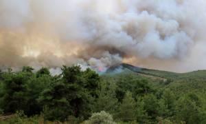 Σοκαριστικό βίντεο από τη φωτιά στη Θάσο: Πέρασαν μέσα από τις φλόγες