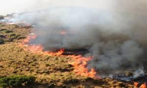 Σε εμπρησμό αποδίδεται η μεγάλη φωτιά στη Λέρο - Συμπλοκές μεταξύ προσφύγων