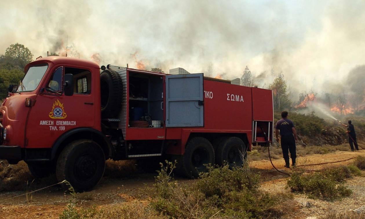 Πυροσβεστικό Σώμα: Εβδομήντα τέσσερις πυρκαγιές το τελευταίο 24ωρο