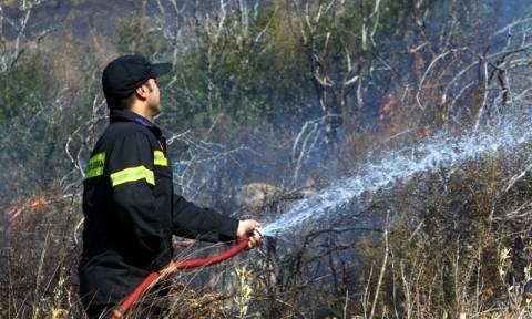 Μεγάλη φωτιά στο Πικέρμι - Οι φλόγες πλησιάζουν σπίτια