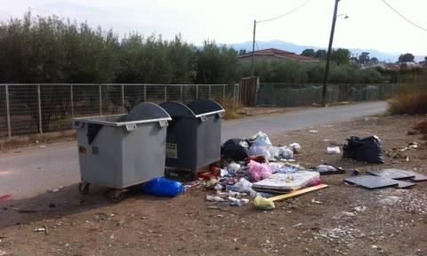 Αποκάλυψη Newsbomb.gr: Η... σκουπιδομάνα Ερέτρια