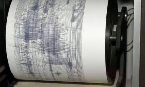 Σεισμός Ιωάννινα: «Κάθε 30 δευτερόλεπτα και μια σεισμική δόνηση στην Ήπειρο»