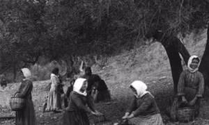 H Κρήτη του 1910-1920 μέσα από 19 σπάνιες φωτογραφίες του Ελβετού Fred Boissonnas (photo)