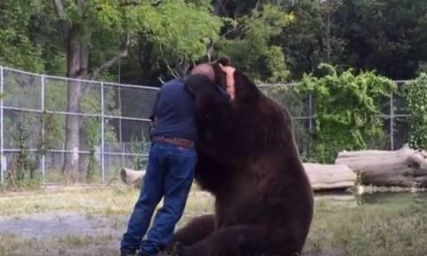 Αρκούδος «επιτέθηκε» στο φροντιστή του με... αγκαλιές και φιλιά! (vid)