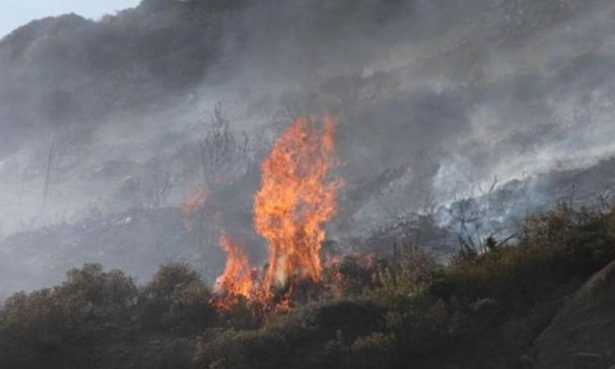 Συναγερμός στη Μυτιλήνη για μεγάλη πυρκαγιά στη Μόρια