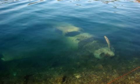 Πέταξαν πάνω από τον Σκορπιό για να φωτογραφίσουν τον Ωνάση και βρέθηκαν στη θάλασσα (photo-video)
