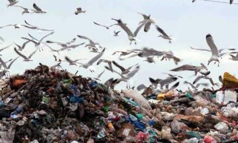 Κλείνουν άμεσα 37 παράνομες χωματερές -Σε ποιες Περιφέρειες βρίσκονται