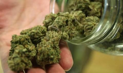 Συλλήψεις για ναρκωτικά στο Ηράκλειο - Βρέθηκαν και κατασχεθήκαν 8 κιλά κάνναβης