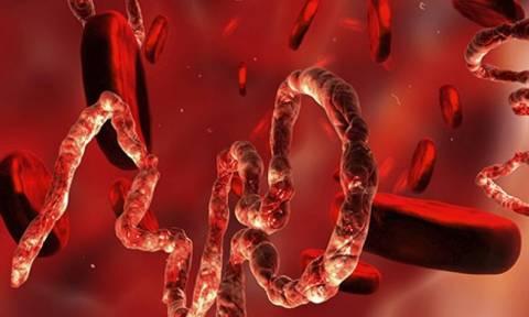 Ο ιός Έμπολα μεταλλάχθηκε και είναι πλέον τέσσερις φορές πιο ικανός να σκοτώνει ανθρώπους