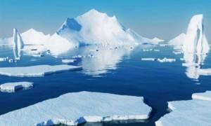 Μυστηριώδης θόρυβος απομακρύνει τα ζώα από την Αρκτική