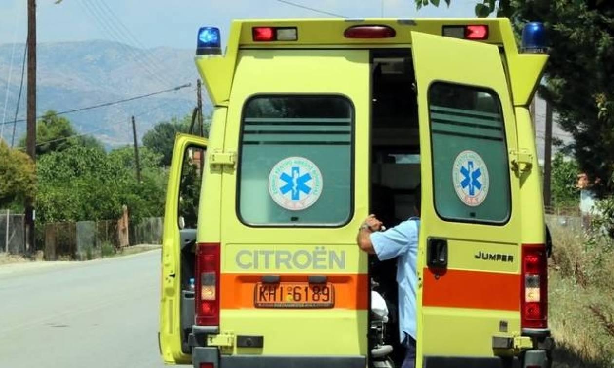 Τραγωδία στη Χίο: Καταπλακώθηκε από το κλαδί που έκοψε