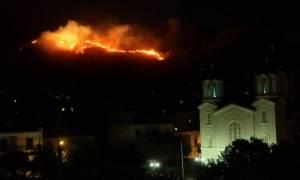 Μάχη με τις φλόγες και τους ισχυρούς ανέμους δίνουν οι πυροσβέστες στην Κάρυστο