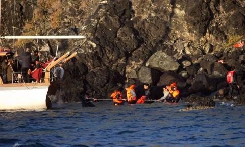 Συνελήφθησαν θρασύτατοι Τούρκοι διακινητές στη Μυτιλήνη