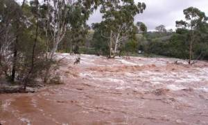 Ηλεία: «Βούλιαξαν» περιοχές από τις καταρρακτώδεις βροχές