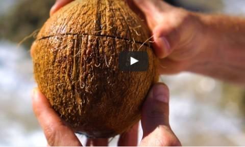 Πώς να ανοίξετε μια καρύδα χωρίς κανένα απολύτως εργαλείο... (video)