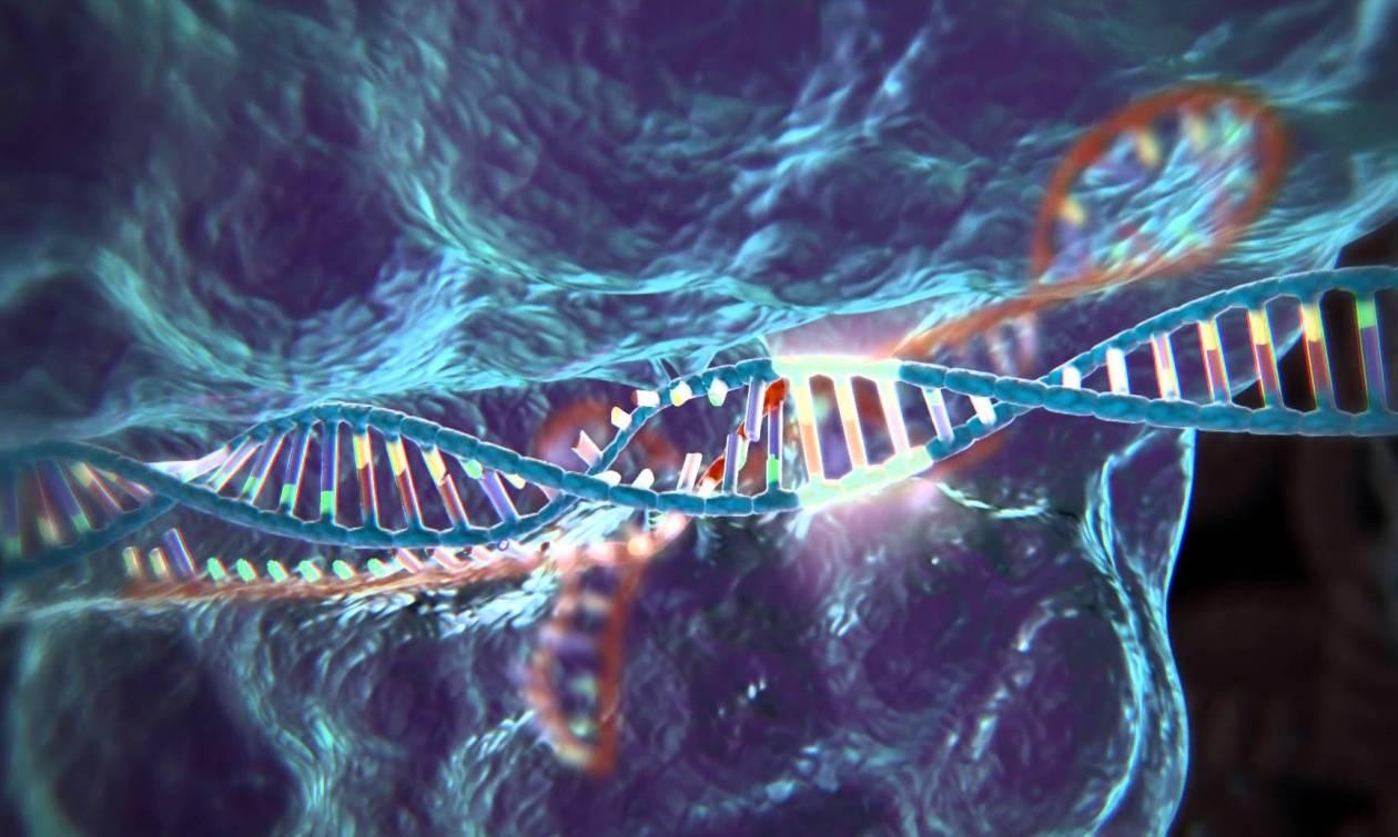 Συγκλονιστικό: Ανακάλυψαν το «Άγιο Δισκοπότηρο» της γενετικής - Είναι ελιξίριο της νεότητας;