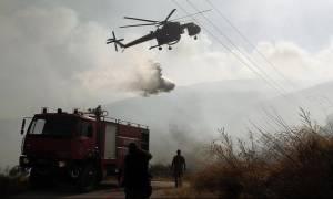 Φωτιά στην περιοχή Λατομείων Μαρκόπουλου - Παρέμβαση της Περιφέρειας