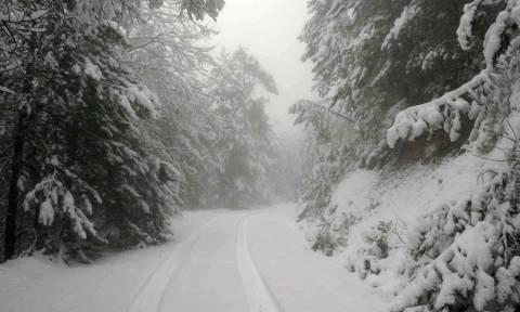Καιρός: Πλησιάζει το πολικό ψύχος από τη Ρωσία - Ποιες περιοχές θα πλήξει - Χιόνια και στην Αθήνα