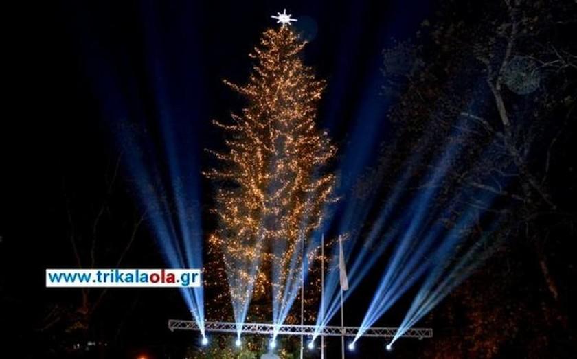 Χριστούγεννα 2016: Δείτε πού βρίσκεται το μεγαλύτερο φυσικό χριστουγεννιάτικο δέντρο (pics&vid)