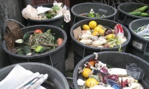 Συγκλονιστικό: Περίπου 88 εκατ. τόνοι τροφίμων καταλήγουν κάθε χρόνια στα σκουπίδια της ΕΕ