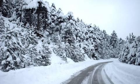 Κακοκαιρία: Χαμηλές θερμοκρασίες και χιόνια σε περιοχές με μεγάλο υψόμετρο στα Τρίκαλα