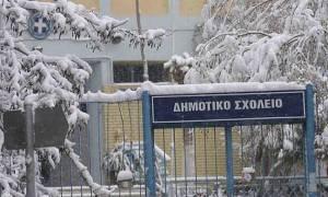 Κακοκαιρία: Κλειστά την Τετάρτη (30/11) τα σχολεία στον δήμο Φλώρινας
