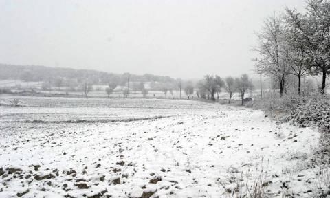Καιρός: Με χιόνια και τσουχτερό κρύο η Τετάρτη - Πολλά τα προβλήματα από την κακοκαιρία (pics)