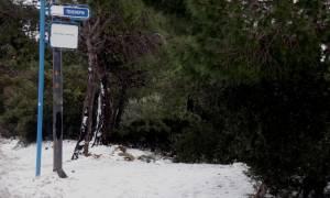 Κακοκαιρία: Χιονίζει τώρα στην Αττική - Δείτε live εικόνα