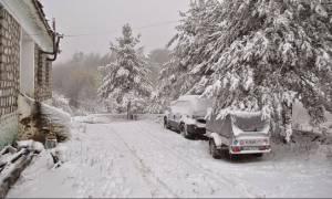 Κακοκαιρία: Στη «δίνη» του χιονιά και ο Βόλος - Πυκνή χιονόπτωση στο Πήλιο