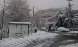 Κακοκαιρία: Στα λευκά η Θεσσαλονίκη - Μαγευτικές εικόνες (photo-video)