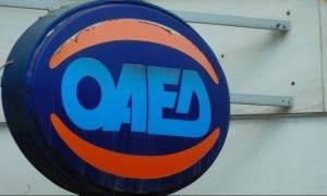 ΟΑΕΔ: Ξεκινάνε σήμερα (1/12) οι αιτήσεις για 23.000 προσλήψεις για ανέργους 29 - 64 ετών