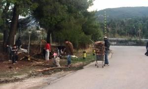 Εικόνες ντροπής στη Μαλακάσα: Μωρά κινδυνεύουν να πνιγούν - Ψάχνουν ξύλα για να ζεσταθούν (vids)