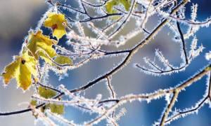 Καιρός: Παγετός και βροχές το Σαββατοκύριακο - Αναλυτική πρόγνωση