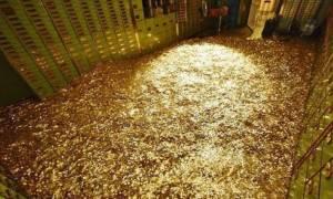Τι δουλειά κάνει άραγε η πλουσιότερη γυναίκα στον πλανήτη; (photo)