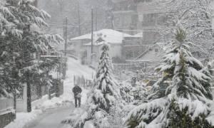 На Кипре из-за снега перекрыто движение в центре столицы