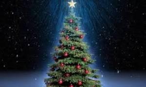 Από το παραδοσιακό Χριστόξυλο στο Χριστουγεννιάτικο δένδρο...