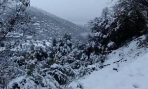Κακοκαιρία: Στην «κατάψυξη» η χώρα - Πού θα χιονίσει τις επόμενες ώρες