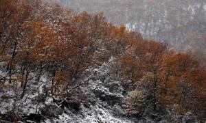 Καιρός: Η εικόνα που «πάγωσε» τους κατοίκους των Ιωαννίνων! (photos)