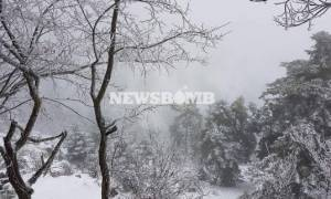ΠΡΟΣΟΧΗ: Αλλάζει άρδην το σκηνικό του καιρού - Χιόνια και στην Αθήνα τις επόμενες ώρες!