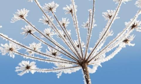 Χειμερινό ηλιοστάσιο: H πρώτη ημέρα του χειμώνα